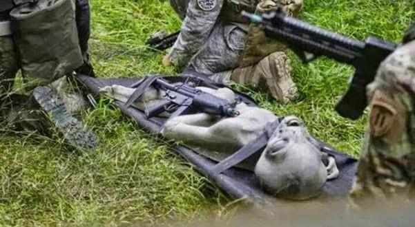 Filtran foto de presunto alien muerto llevado por militares