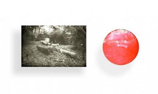 La optografía permite recuperar la última imagen que observamos antes de morir