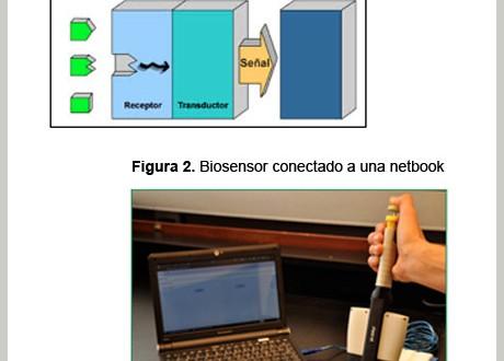 Un biosensor de INTI detecta alérgenos en alimentos