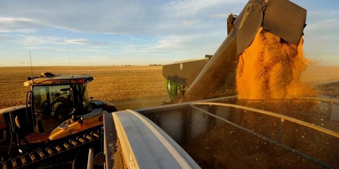 Exportadores de granos mejoraron la liquidación en la última semana