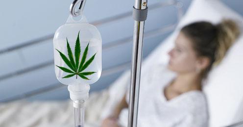Regulación Marihuana medicinal en Uruguay
