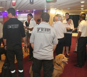 AFIP descubre 15 kg. de cocaína en crucero de lujo
