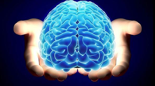 Qué hace el cerebro para que nuestra vida sea más interesante