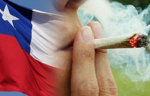 Quieren legalizar la marihuana en Chile