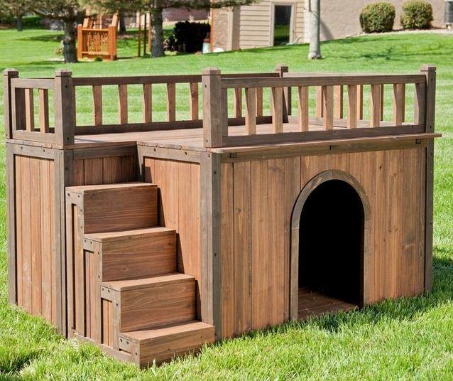 Casas para perros originales3