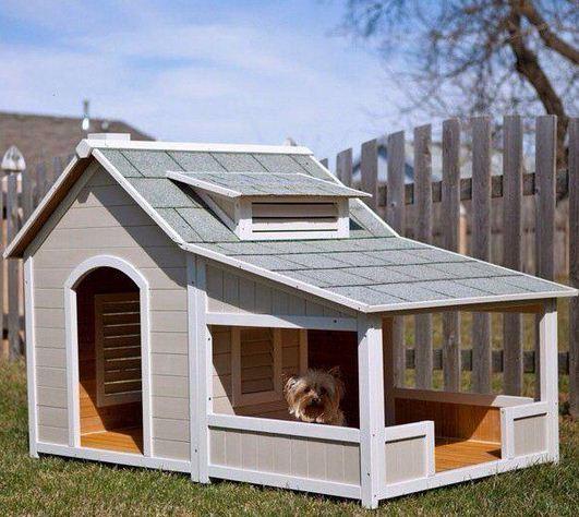 Casas para perros originales4