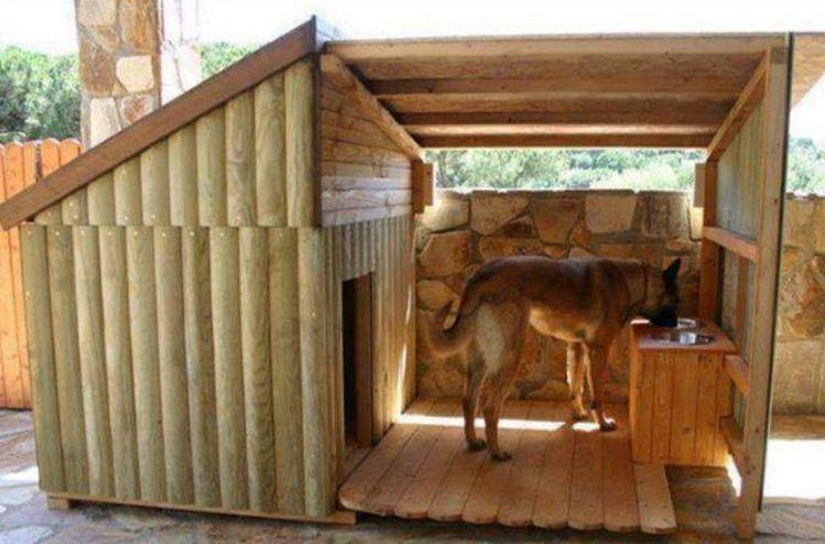 Casas para perros originales5