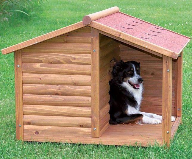 Casas para perros originales6