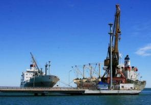 Restablecen reembolso a las exportaciones de la Patagonia