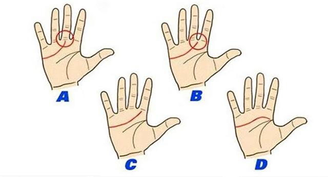 leyendo la palma de tu mano
