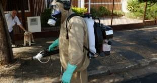"""Afirman que el dengue """"se adelantó"""" a enero por el clima y hay brotes en Misiones y Formosa"""