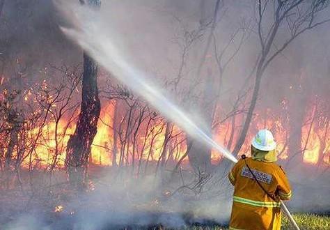 Australia: Incendio forestal destruyó 95 casas y arrasó 50.000 hectáreas