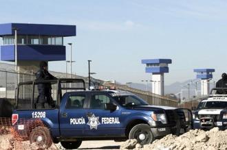 Enterate como vigilan al El Chapo Guzmán con perros para detectar su olor