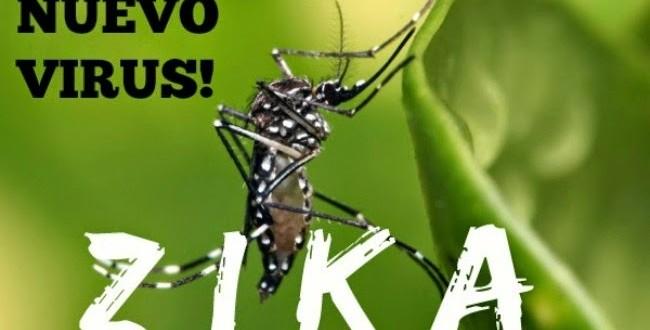Alertan a embarazadas sobre el riesgo de viajar a países donde circula el virus zika