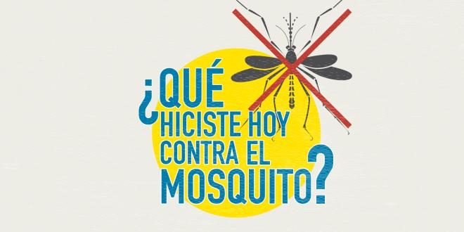 ¿Cómo combatir al mosquito que transmite dengue, zika y chikungunya?