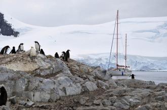 La travesía del Houssay, un velero que desafía los mares antárticos para profundizar la ciencia argentina