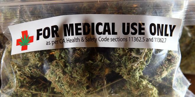 Autorizaron importar cannabis para uso medicinal