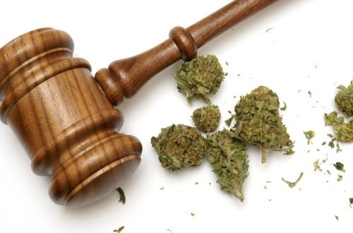 Presentan un proyecto para legalizar la marihuana