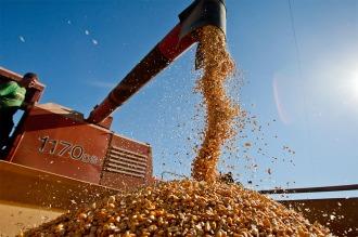 """Buryaile aseguró que """"es el Estado el que va a controlar y fiscalizar las semillas"""""""