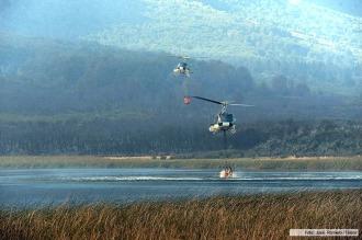 Chubut: revelan hubo más de 30 incendios intencionales en la temporada