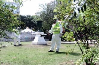 Dengue: advierten que el combate al mosquito agrava la emergencia ambiental