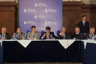 El Senado retoma el debate por el pago de la deuda a los holdouts
