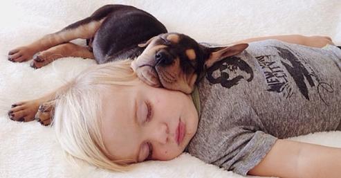 Los pro y contras de dormir con tu mascota