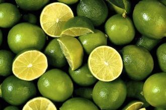 Un desarrollo del INTI optimizará la industria alimentaria y cosmética