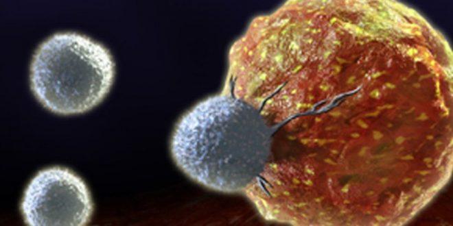 Qué es y en que consiste la Inmunoterapia Tumoral