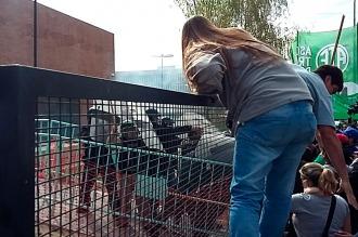Tarifas: se suspendió la audiencia pública en Neuquén por incidentes