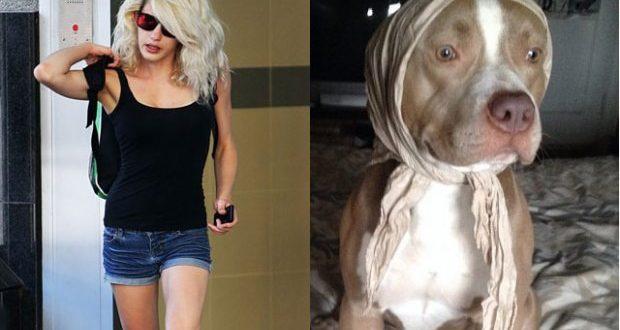"""""""Me arruinó la vida"""", dice Jenna Driscoll, la joven que tuvo sexo con su pitbull"""