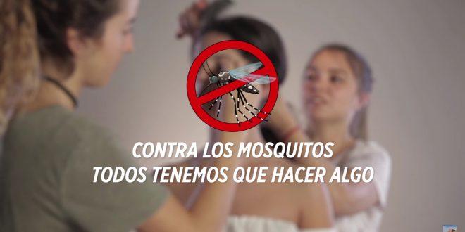 Recomiendan mantener activas las acciones en hogares contra el mosquito transmisor del dengue