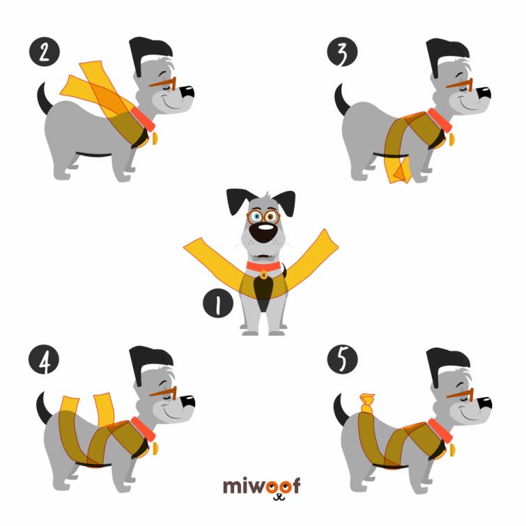 Una técnica para que los perros no se asusten con la pirotecnia