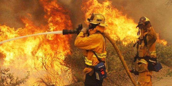 ¿Cómo prevenir los incendios forestales?