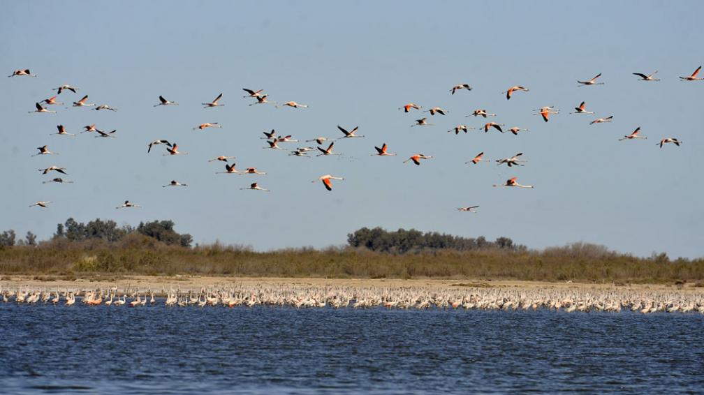 La laguna Mar Chiquita será un Parque Nacional