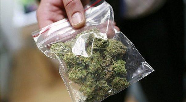 Las farmacias en Uruguay tendrán 400 kilos de marihuana a disposición para la venta a partir de julio