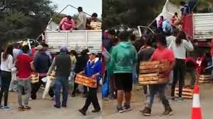 Video: Tras un terrible choque saquearon el camión con el conductor muerto adentro de la cabina