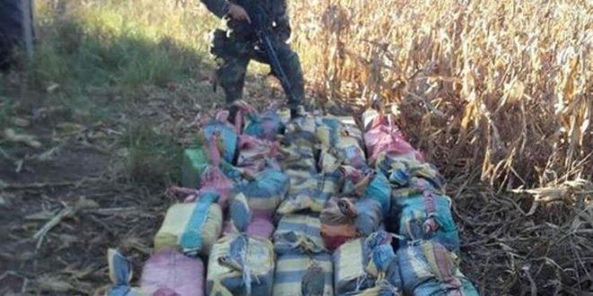 Incautan dos toneladas de cocaina valuada en 45 millones de dolares