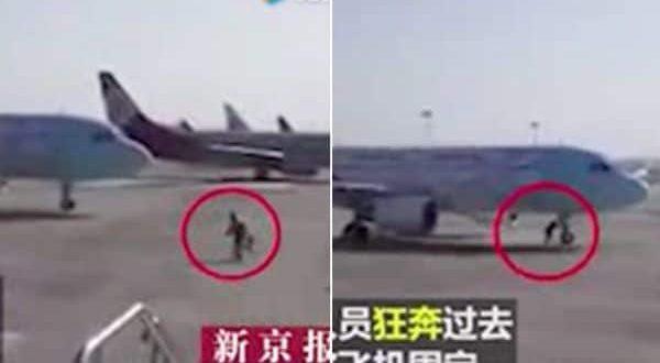 Video: Un empleado de pista detiene a un avión en movimiento con sus propias manos