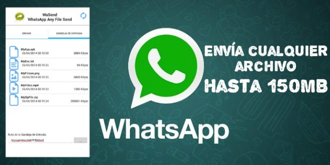 Ya se puede enviar cualquier tipo de archivos por Whatsapp