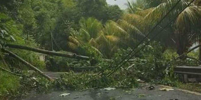 Huracán María alcanzó categoría 5 y devastó Dominica