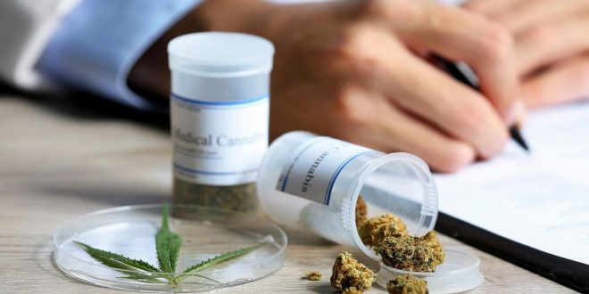 Reglamentaron ley que habilita el uso medicinal del cannabis