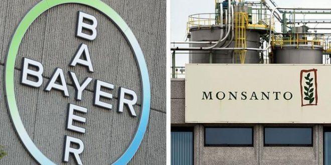 Bayer le venderá a BASF venderle sus divisiones de semillas y herbicidas