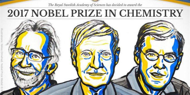 El Nobel de Química premia la criomicroscopía electrónica