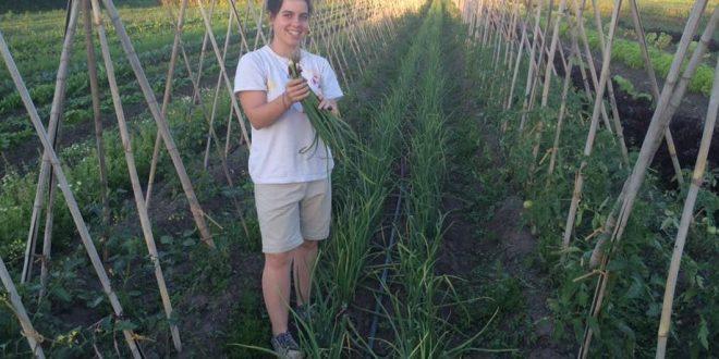 Ganó el premio a la mujer empresaria del año produciendo verduras sin agrotóxicos