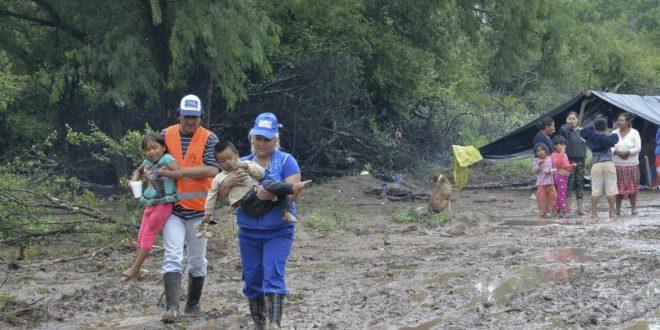"""Miles de evacuados en Salta por las inundaciones y advierten sobre """"posibles epidemias"""""""