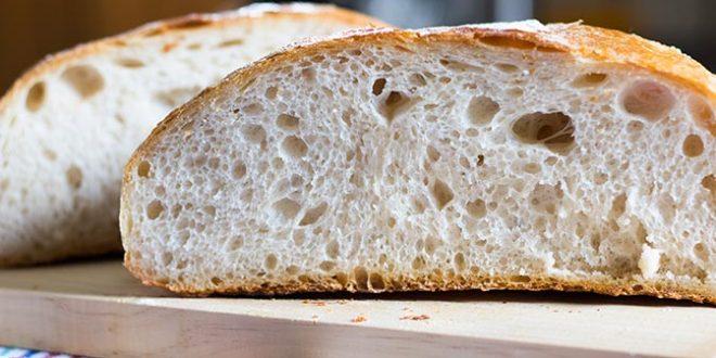 Que es y como se hace la masa madre para hacer pan o pizza