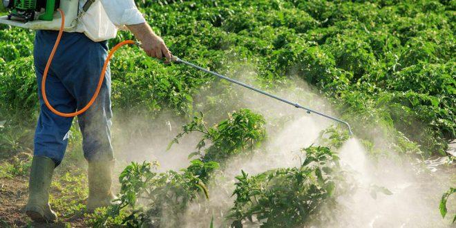 Regulan aplicación de Agroquímicos para cumplir normas ambientales internacionales