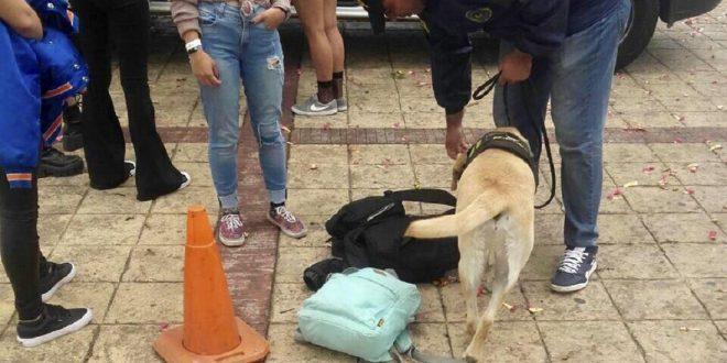 65 personas detenidas por venta de droga durante el festival Lollapalooza