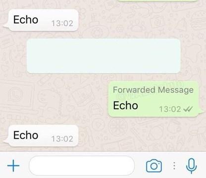 WhatsApp le avisará a tus contactos si le reenviás un mensaje a otra persona